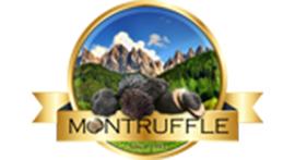 لوگو سایت مانترافل